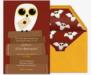 Birthday Owl Invite Invitation