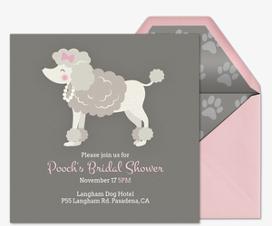 pet fancy dogs invitation