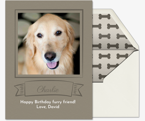 Pet Frame Invitation