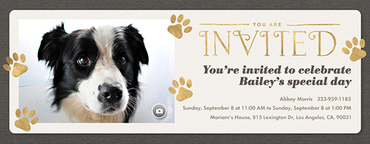Golden Paws Invitation