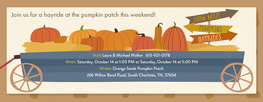 Pumpkin Patch Fun Invitation